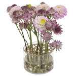 Vases Decoration Finnish Design Shop