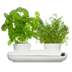Herb/flower pots