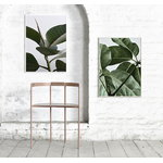 Paper Collective Green Home 01 poster, 50 x 70 cm