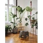 Vitra Eames Elephant, plywood, grey