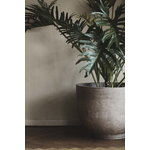 &Tradition Collect SC43 planter, 45 x 60 cm, silver grey
