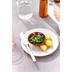 Gense Nobel cutlery, set of 16