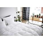 Joutsen Syli down pillow, 50 x 60 cm, medium soft and high