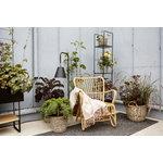 Parolan Rottinki Vintage tuoli, luonnonvärinen