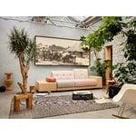 Vitra Eames House Bird, pähkinäpuu