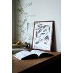 Teemu Järvi Illustrations Uistinvita juliste, 30 x 40 cm