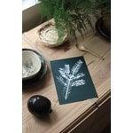 Teemu Järvi Illustrations Leaves mini poster set, 4 pcs