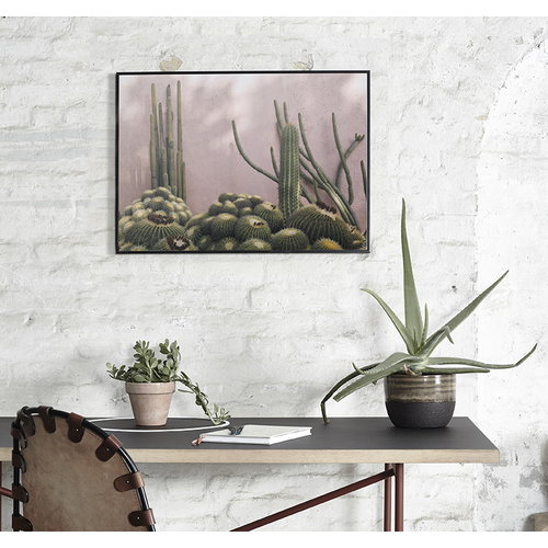 Paper Collective Plants on Pink juliste
