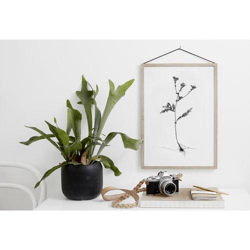 RK Design September Flowers #2 juliste