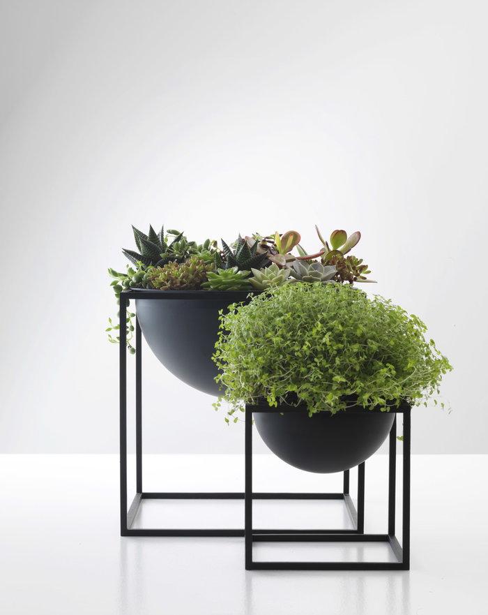 Viherkasvit By Lassen Musta Kubus