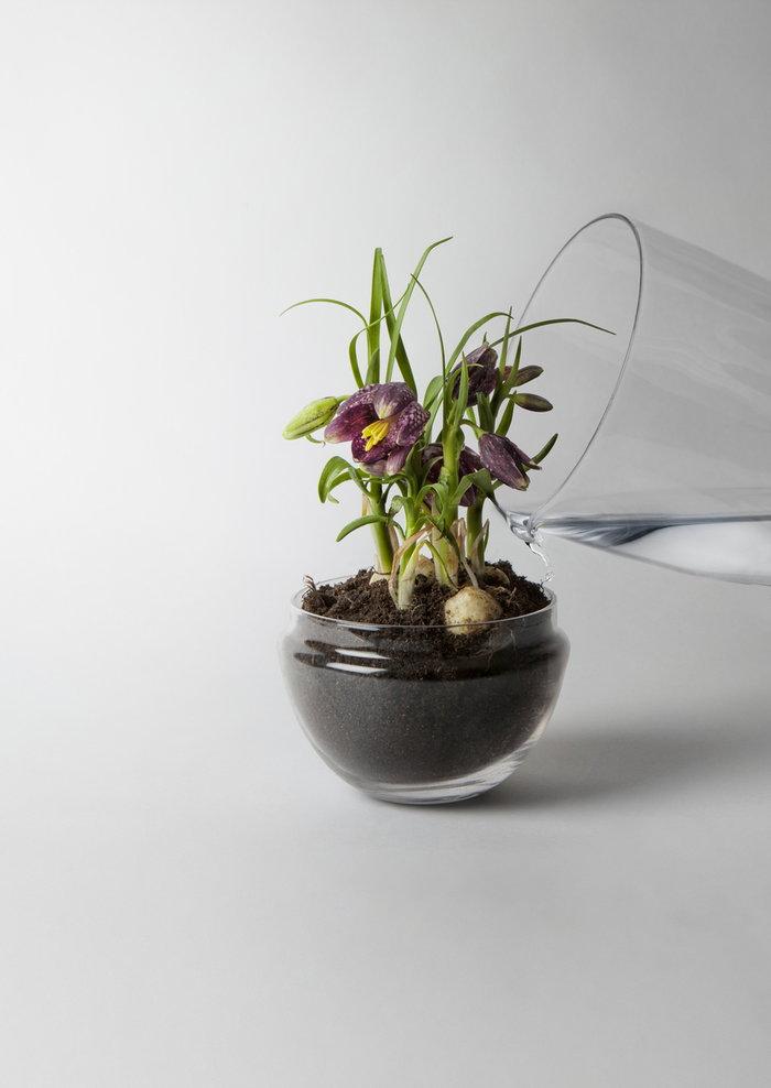Design House Stockholm Kirkas Björk