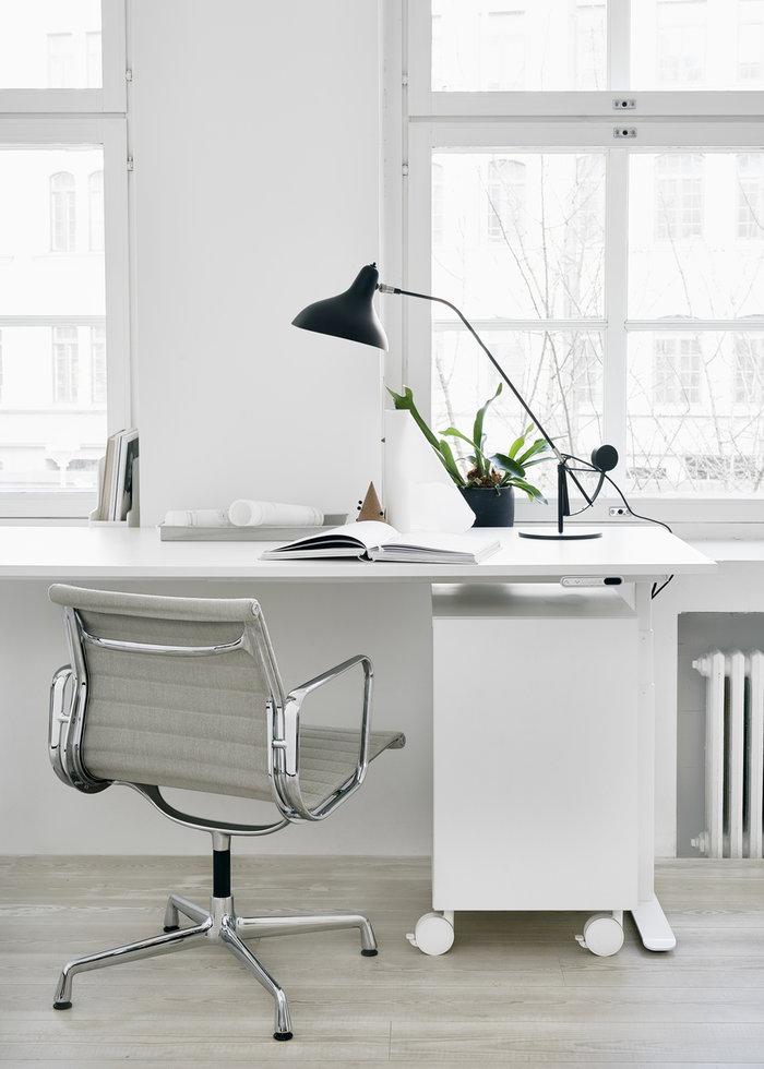Office Houseplants DCW éditions HAY Adi Black Nature White Steel Cork Mantis