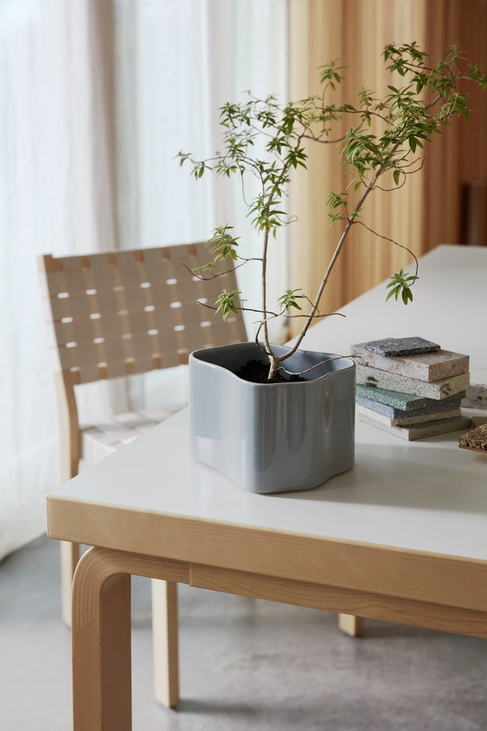 Houseplants Diningroom Artek Nature Grey Birch Ceramic Aalto tables