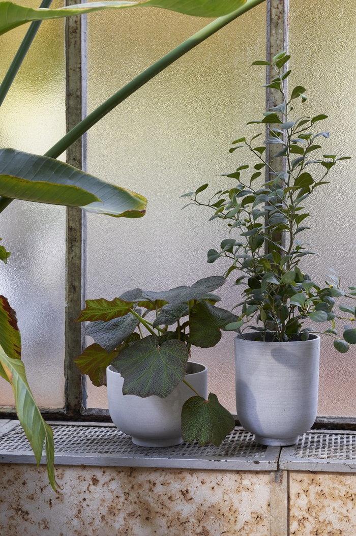Viherkasvit &Tradition Harmaa Muovi