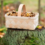 Verso Design Lastu mushroom basket, S