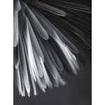 Foscarini Sun - Light of Love pendant, white