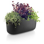 Eva Solo Herb organiser, self watering, black