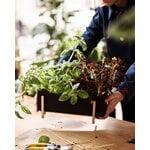 Design House Stockholm Botanic planter box