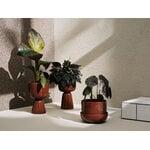 Iittala Nappula plant pot 260 x 155 mm, brown
