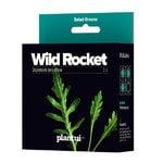 Plantui Wild Rocket