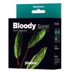 Plantui Bloody Sorrel