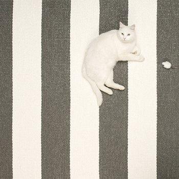 Pappelina Bob matto, 70 x 120 cm, musta-vanilja