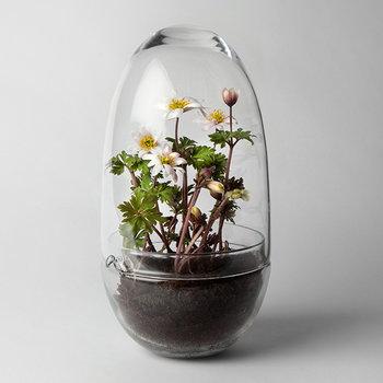 Design House Stockholm Grow mini greenhouse, L