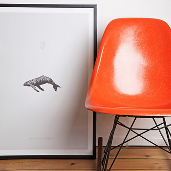 Paper Collective Whale Reprise poster