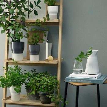 Eva Solo Herb/flower pot, small