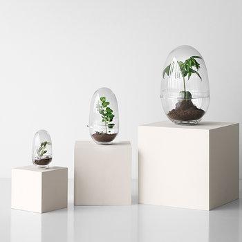 Design House Stockholm Grow minikasvihuone, L