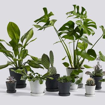 Hay Vaso e sottovaso Flowerpot, XL, grigio