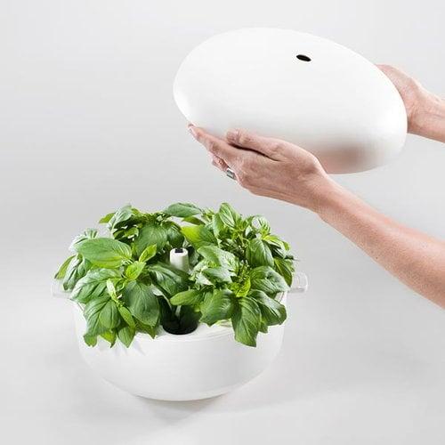 Plantui Smart Garden 6, bianco