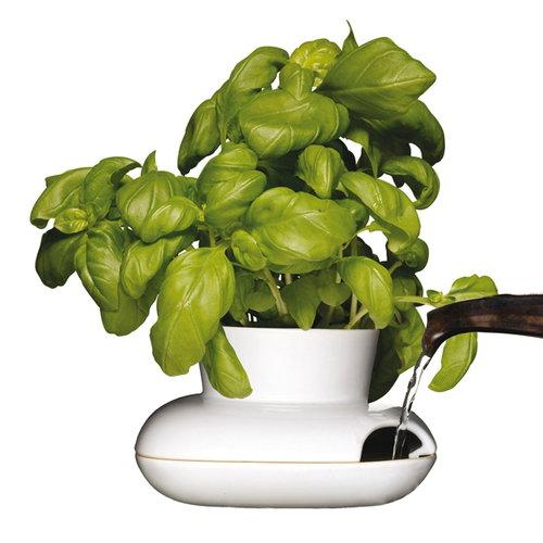 Sagaform Hold herb pot, small