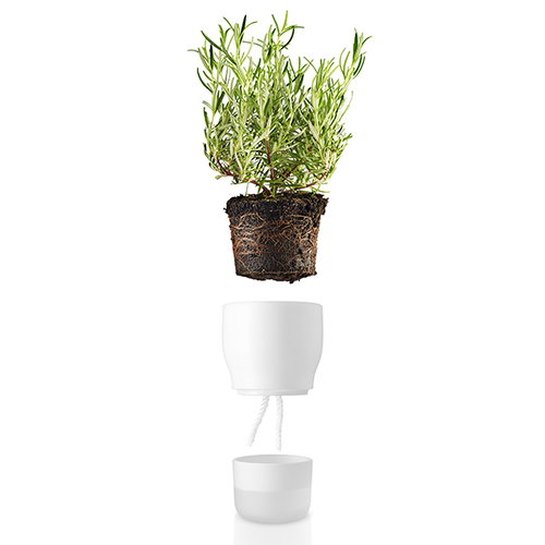 Eva Solo Herb/flower pot, large