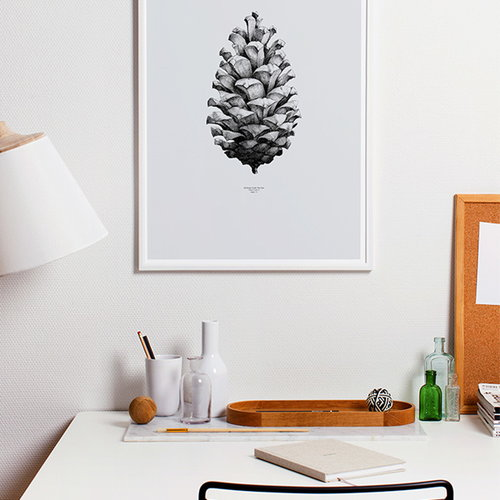 Paper Collective Nature 1:1 Pine Cone juliste, harmaa