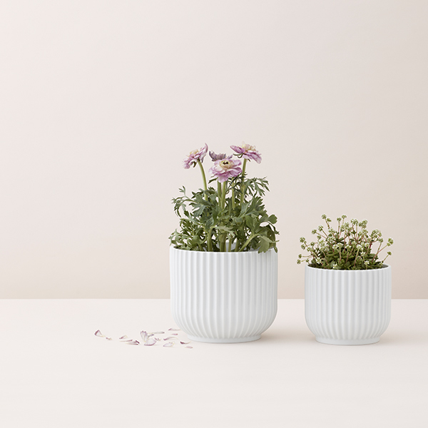 Lyngby Porcelain Flower Pot Small White