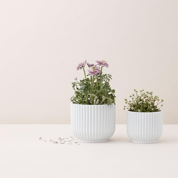 Lyngby Porcelain Flower Pot Small White Finnish Design Shop