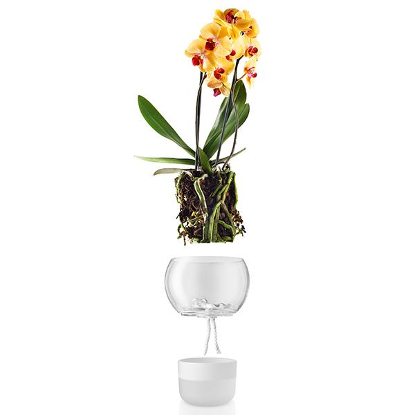 Eva solo vaso per orchidee grande finnish design shop - Vaso in gres per orchidee ...