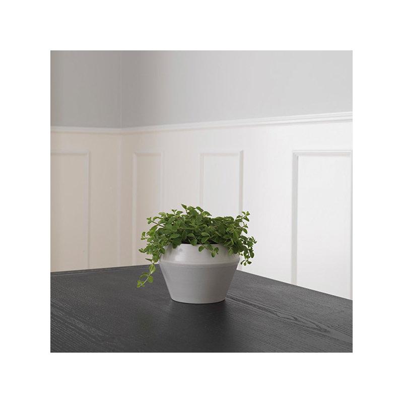 By lassen vaso da fiori rimm piccolo cool grey finnish for Fiori invernali da vaso esterni