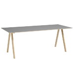CPH10 table 160x80 cm, matt lacquered oak - grey lino