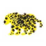 The Wrong Shop Jaguar juliste, 68 x 50 cm