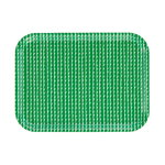 Rivi tray 27 x 20 cm, green-white