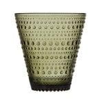 Bicchiere Kastehelmi 2 pz, verde muschio