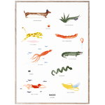 MADO The Mado Family poster, 50 x 70 cm