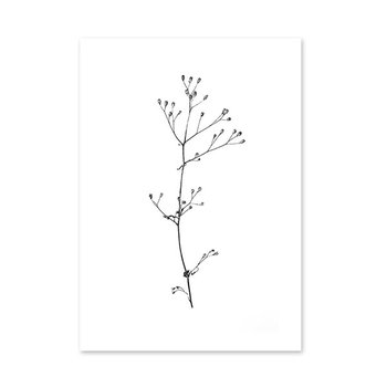 RK Design September Flowers #3 juliste