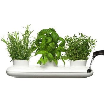 Sagaform Vaso triplo per erbe Hold