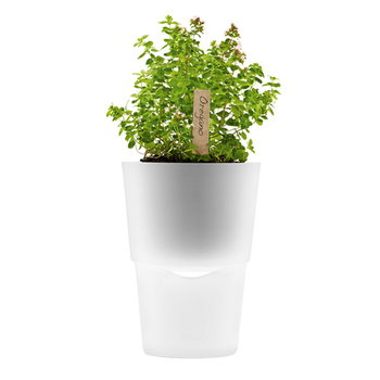Eva Solo Herb/flower pot, frosted glass