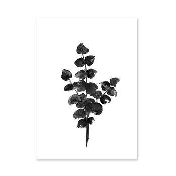 RK Design Eucalyptus juliste