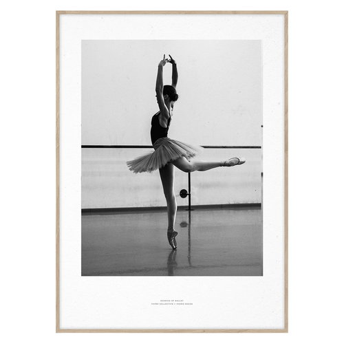 Paper Collective Essence of Ballet 04 poster