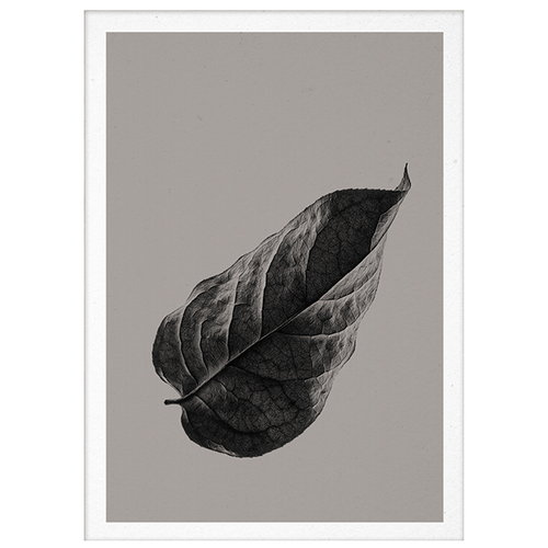 Paper Collective Sabi Leaf 01 poster